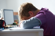 Cyberbullying and homophobic bullying policies now mandatory for schools