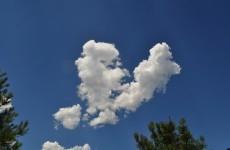 Does heartbreak cause actual pain?