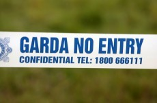 Pedestrian killed by car in Leitrim