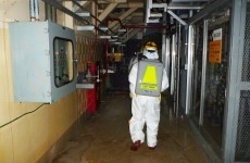 Engineers begin dangerous task of removing fuel rods from Fukushima