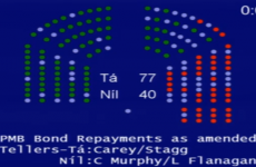 Motion to 'burn the bondholders' defeated in Dáil vote