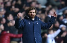 VIDEO: AVB turns press conference tense with response to journalist 'insults'