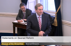 Taoiseach rules out giving voting rights to all in Seanad elections