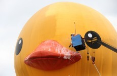 Watch the moment a giant rubber duck burst horribly in Taiwan