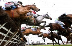 Fairyhouse scrambles to cover up anti-royal slogan burnt into turf