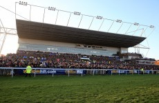 Bookies stung for millions as punters cash in on 'Curley Coup'