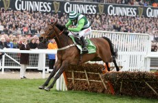 Rock On Ruby may head straight for Cheltenham
