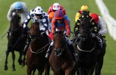 Minister supports doubling of betting tax to fund Irish horseracing industry