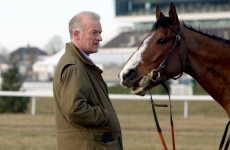 7 numbers showing why you should back Willie Mullins at Cheltenham