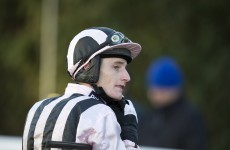 GIF: Irish jockey Daryl Jacob injured as Port Melon crashes through Cheltenham railing