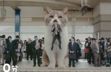 Can anyone explain what's going on in this Japanese chewing gum ad?