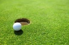 On the green: NAMA nets €5 million for €80 million Kildare golf resort