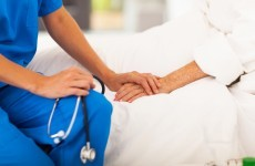 Doctors' organisation says politics getting in way of patient treatment
