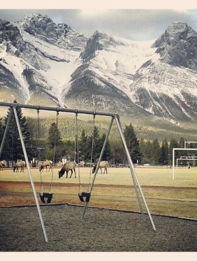 This Is What A Children's Playground Looks Like In Canada Pic of the Day