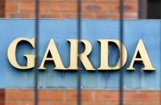 Gardaí disarm and arrest hatchet-wielding man after aggravated burglary