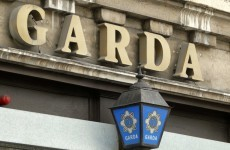 "Decision to allow gardaí strike would raise ""serious"" issues for Ireland"