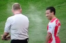 Arsenal's Santi Cazorla gets maced with vanishing spray