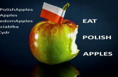 Poland have asked the people of Ireland to eat their apples