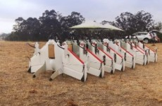 Google wants to test drones that could bring internet access to remote areas