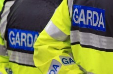 Gardaí have been 'incalculably' damaged by delay in investigation of 'garda misconduct'
