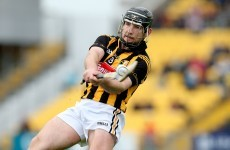 Kilkenny's Richie Hogan gets a fairytale finale to perfect season
