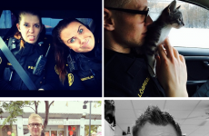 Icelandic police's adorable Instagram will restore your faith in humanity
