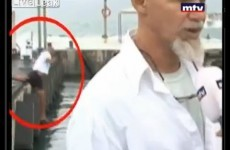 News interview captures hilariously unfortunate moment in the background