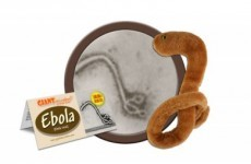 Ebola-shaped plush toys exist, and they have completely sold out