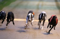 One of Dublin's two greyhound stadiums is to be closed and sold