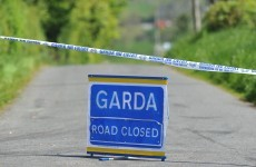 Man in his 20s dies after his van struck a tree in Longford