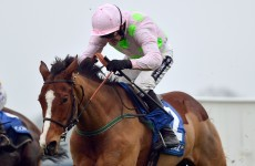 He's a machine! Faugheen nearly unbackable for Cheltenham after Kempton demolition