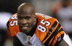 Patriots swoop for Ochocinco and Haynesworth
