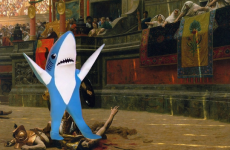 The 18 best internet reactions to Katy Perry's confused shark dancer