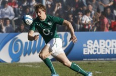 One of the stars of Ireland's Six Nations win last year won't play rugby again this season