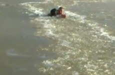Most determined guy ever wades through frozen river to rescue his dog