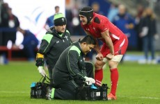 One of Wales' key players looks odds-on to be fit for their Six Nations clash with Ireland