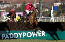 Paddy Power has been taking in record bets – but how many are winners?