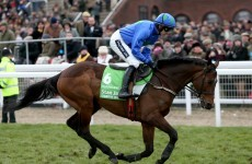 The42′s Winning Post: Everything you need to enjoy day one of Cheltenham — and pick a winner