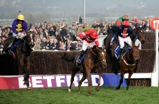 Poll: Who do you think will win today's Gold Cup at Cheltenham?