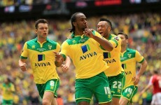 Wes Hoolahan and Norwich will feature in next season's Premier League