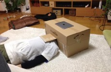 People are using cardboard boxes to make iPhone cinemas and it's strangely ingenious