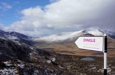 Here's why animation fans are being told to go to Dingle
