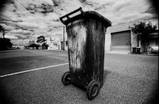 A beginner's guide to wheelie bin etiquette (plus how to store them)
