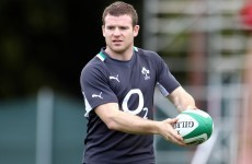 Delayed arrivals: D'Arcy and Healy join team-mates in New Zealand