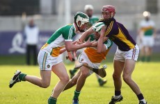 Wexford keep Leinster U21 three-in-a-row dream alive with win over Offaly