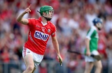 Cork and Wexford teams confirmed for this evening's qualifier