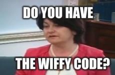 Looks like Senator Fidelma Healy Eames believes that Wi-Fi is pronounced 'wiffy'