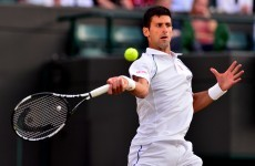 Djokovic's fightback from 2 sets down halted by bad light as big guns cruise through