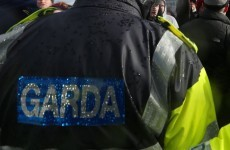 Gardaí cleared following allegations of pepper spraying woman and 'refusing her water and medical attention'