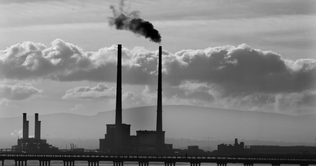The Poolbeg Chimneys have some very unusual residents